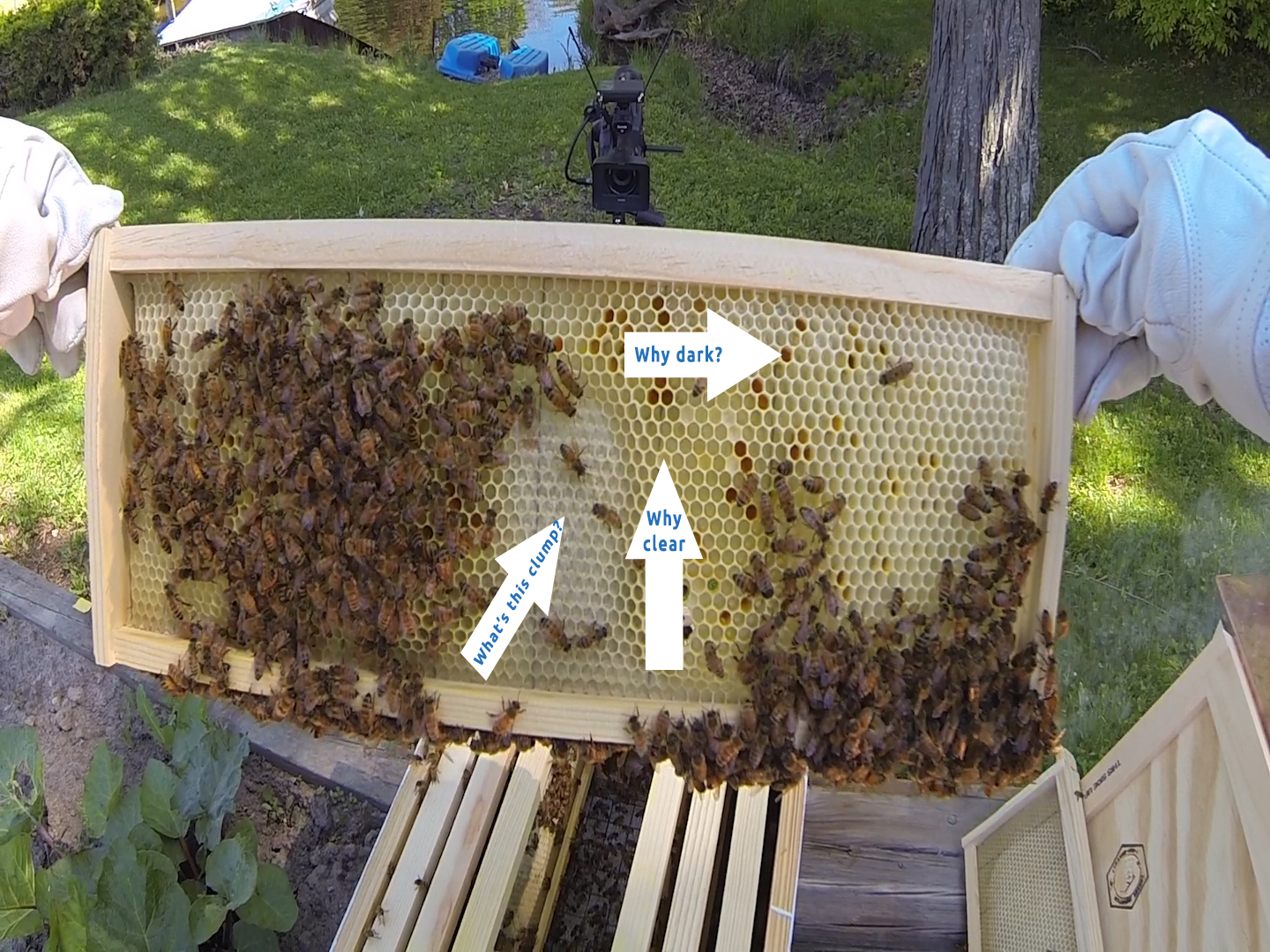 3 Day Queen Inspection goes well!