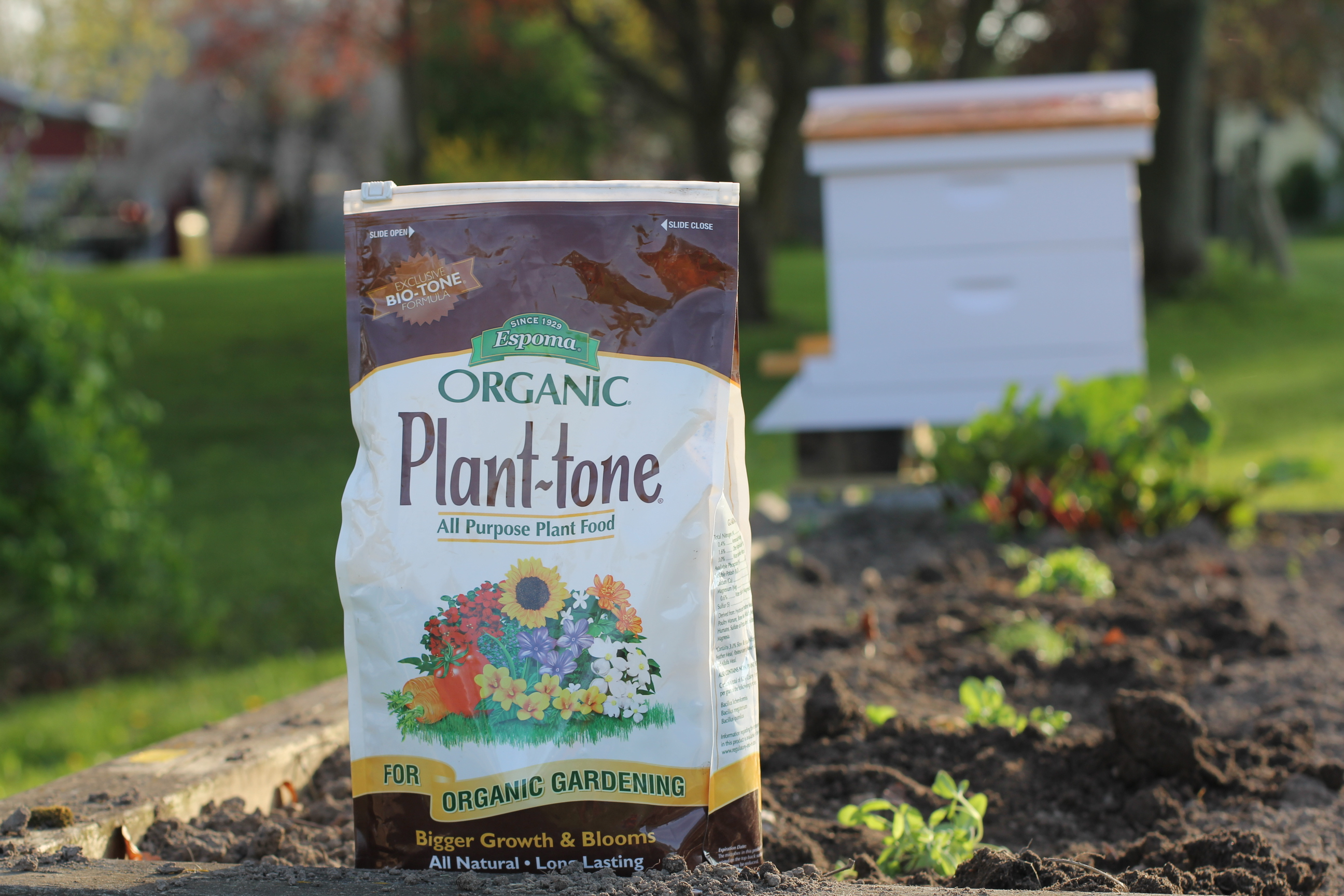 Growing an Organic Bee Garden